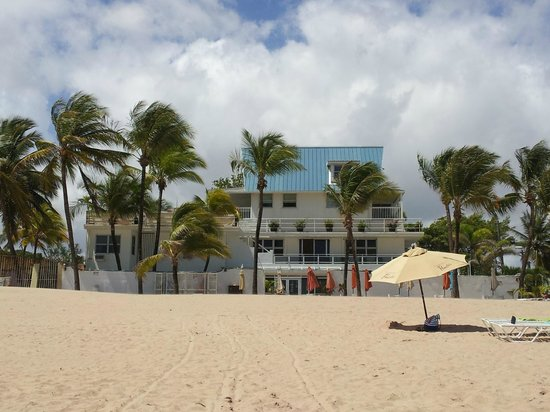 Numero Uno Guest House: View of Numero Uno from the beach