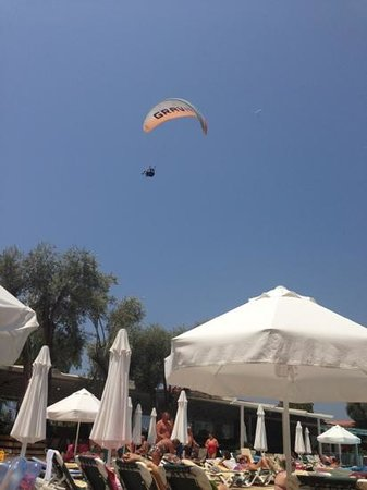 بيلسيكيز بيتش كلوب: para glider