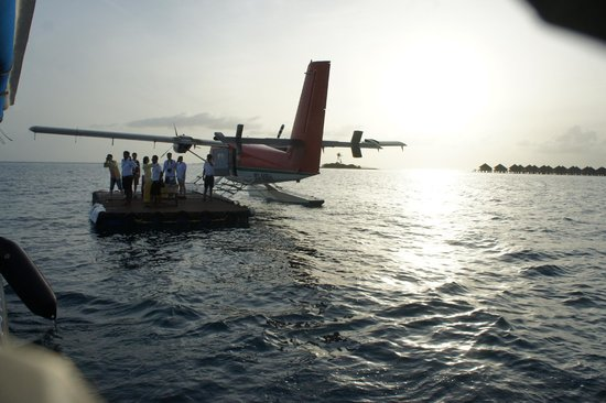 Safari Island: Boarding gate