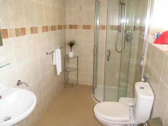 Riviera Lodge Hotel Torquay : shower room
