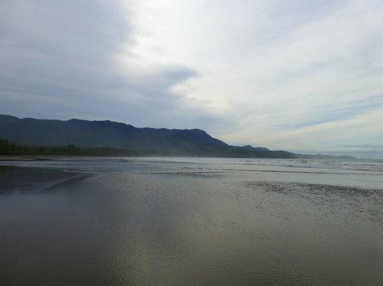 Parque Nacional Marino Ballena: desde principio cola de ballena