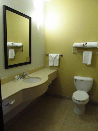 Sleep Inn & Suites: Bathroom