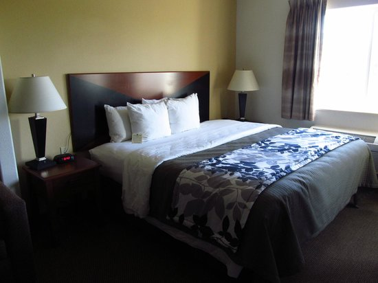 Sleep Inn & Suites: Large Room