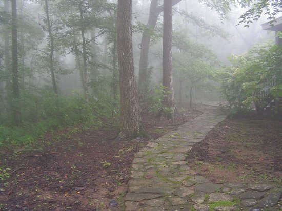 The Overlook Inn Bed and Breakfast: path to the back of property - magical!