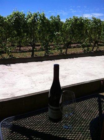 Ponzi Vineyards: excellent Pinot noir