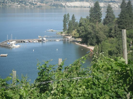 Paradise Cove Guest House: Manitou Beach and Okanagan Lake