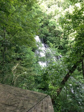 Cherokee Foothills Scenic Highway: Just a 5 minute walk to see this...