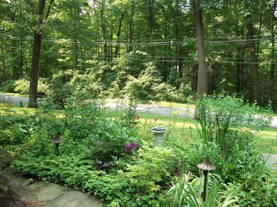 Inn the Woods Bed and Breakfast: Beautiful Gardens