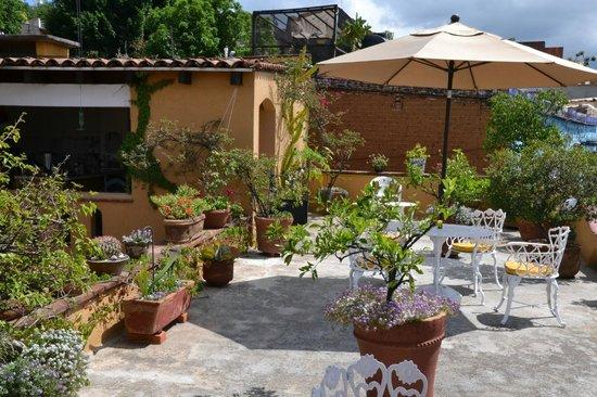 Hotel Azucenas: terrace