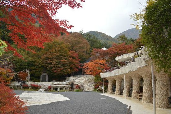 Itchiku Kubota Art Museum : Seeing this place in October was amazing with the maples turning color.