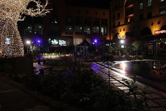 DaVinci Hotel and Suites: Tem otimos restaurantes la