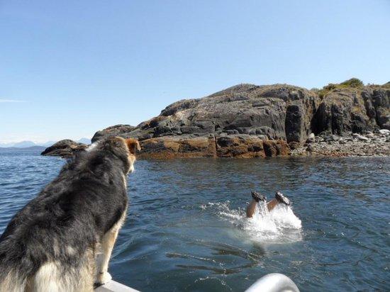 Lund Seaside Inn: Gord diving for sea urchins