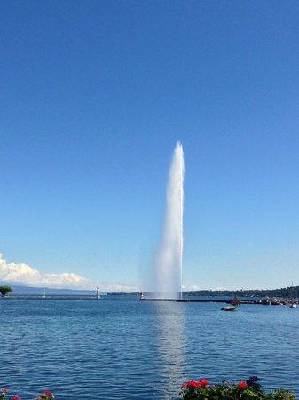 Hotel Metropole Geneve: Lake Geneva