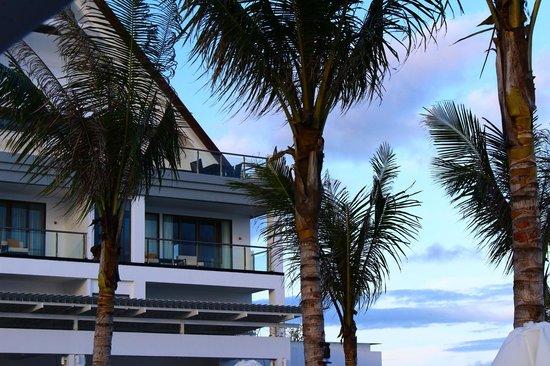 Lv8 Resort Hotel: Ocean View Studio
