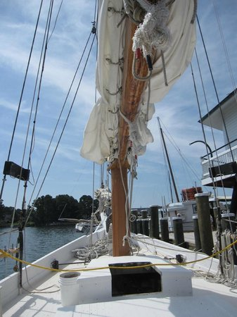 ‪Chesapeake Skipjack Sailing Tours‬