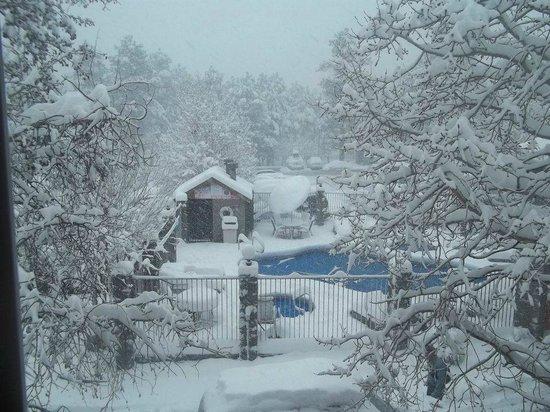 Comfort Inn Flagstaff: Snow that got us here!