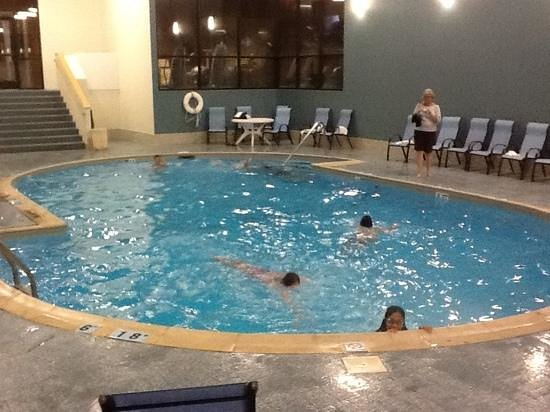Holiday Inn St. Louis - South County Center : Indoor Pool