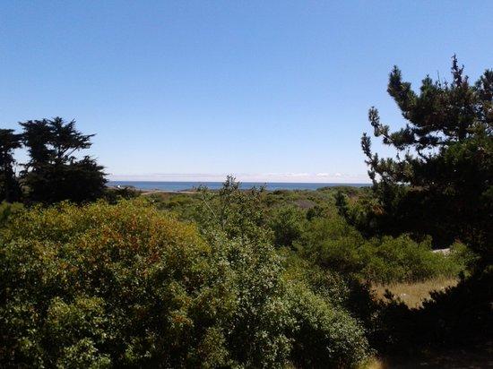 San Simeon State Park: veiw from campsite