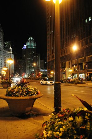 Comfort Suites Michigan Avenue / Loop: just outside the hotel night view