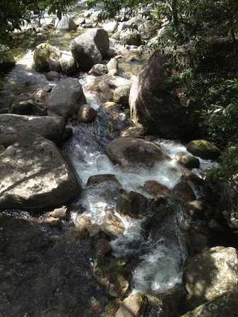 Mossman Gorge: lovely rock pools and waterfalls