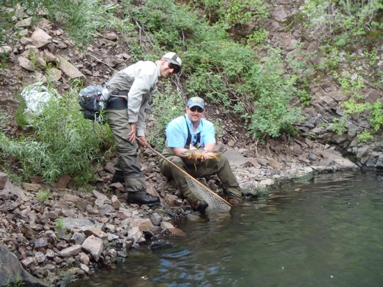 Cimarron River : Real nice fish