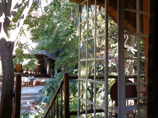 TreeTops & Treats Guest House: View from Cats Suite