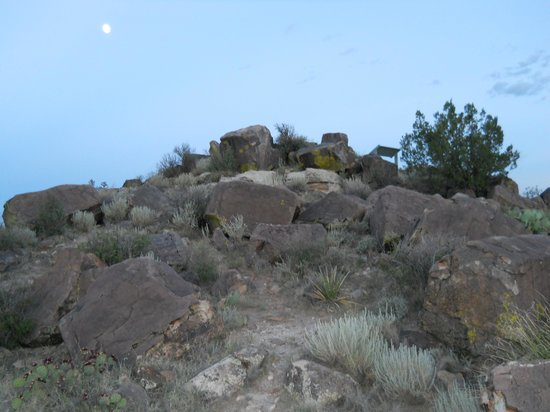 Valley of Fires Recreation Area: An overlook you can climb to see the entire valley