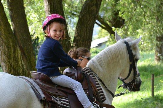 Wild Horses - Equitazione Americana