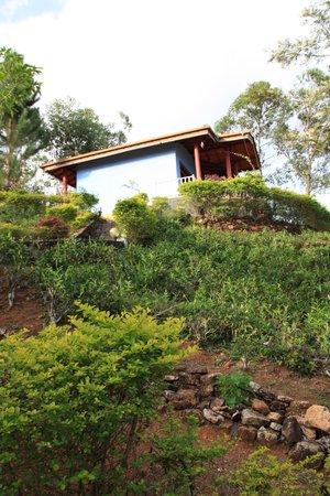 View Point Villa: huisje