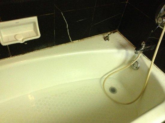 Beijing Wangfu Hotel: Blocked bathtub