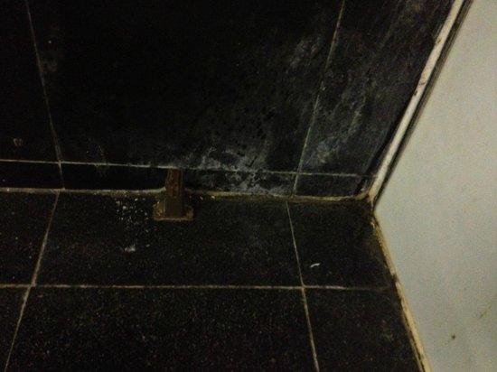 Beijing Wangfu Hotel: Dirty corner in bathroom