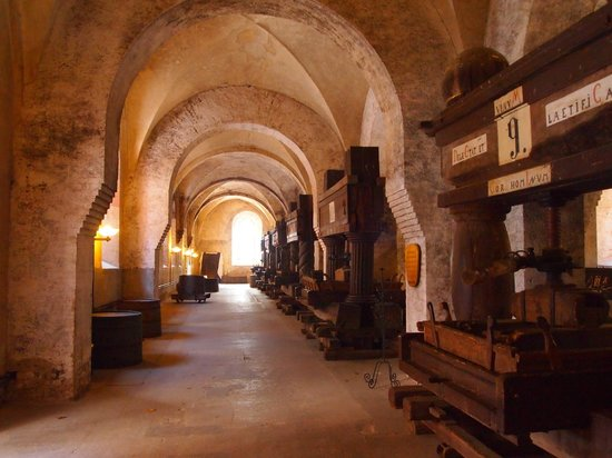 Lay brothers refectory of Kloster Eberbach
