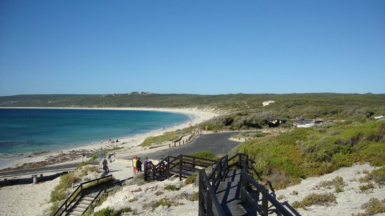 Hamelin Bay Holiday Park: Beach View