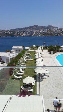 Hotel Baia Bodrum : Terastan havuz ve deniz manzarası