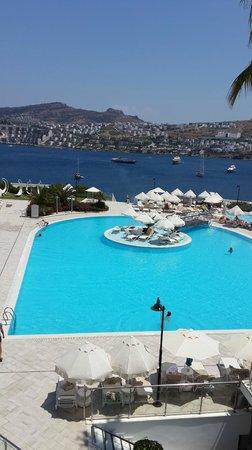 Hotel Baia Bodrum : Teras dan havuz ve deniz manzarası