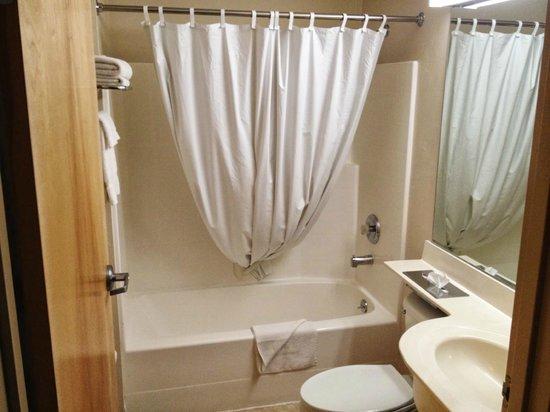 River Canyon Lodge Inn and Suites: バスルームもこじんまり