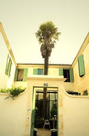 La Maison du Palmier : Façade