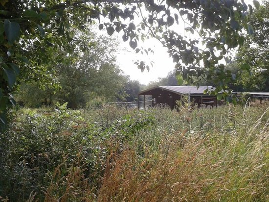 Kate's Farm Bed & Breakfast: Garden overlooking the nature reserve