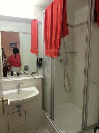 Hotel Castell: Shower