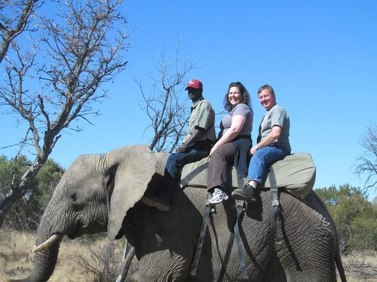 Adventures with Elephants : What An Awesome Experience!