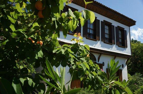 Terrace Houses Sirince: Fig House