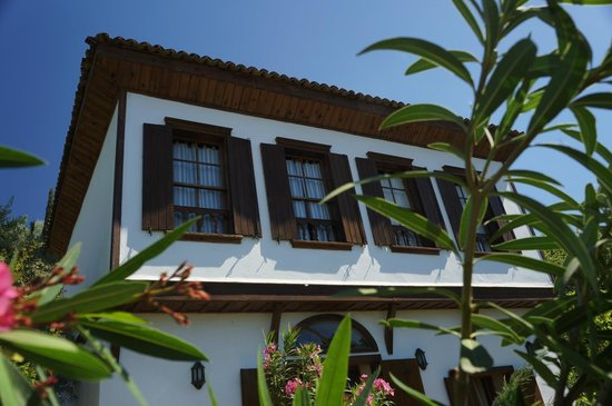 Terrace Houses Sirince: Fantastic Fig House