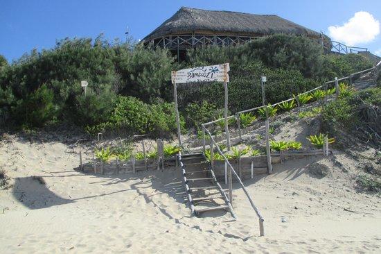 Bamboozi Beach Lodge : Bamboozizugang vom Strand
