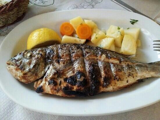 Rozalia : fish