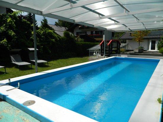Hotel Rheinischer Hof : pool