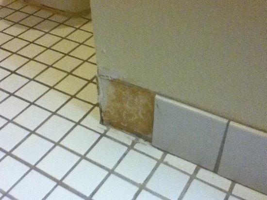 Baymont Inn & Suites ST. Joseph/Stevensville: Bathroom