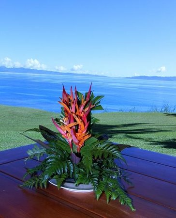 Taveuni Island Resort & Spa: view of somosomo straits from the resort.
