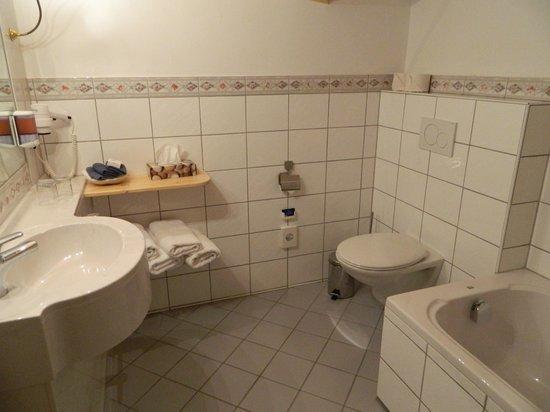 Hotel Rheinischer Hof : bathroom