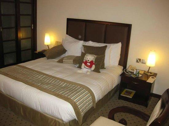 Al Ain Palace Hotel: Standard Room