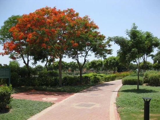 Al Ain Palace Hotel: Park